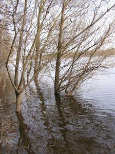 Łomżyński Park Krajobrazowy